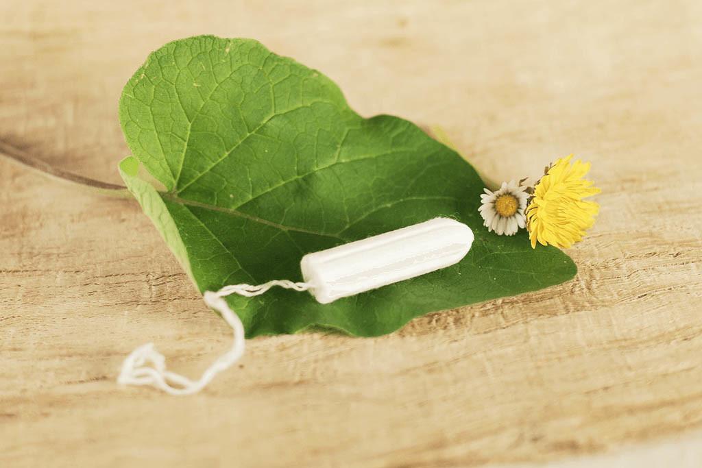 Bio-Tampon aus Baumwolle auf Blatt mit Blume