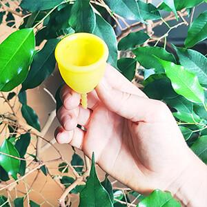 Menstruationstasse mit Baum