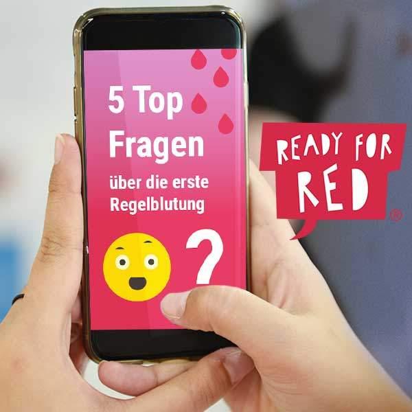 ready for red lernplattform periode einfach erklärt